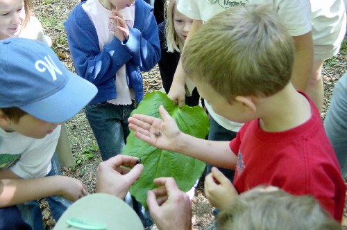 2004 Kids' Hike: