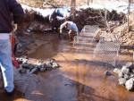 Highlight for Album: Synnott's Dam Repair