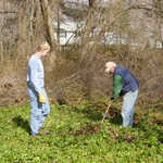 At Synnott's Pond, Chris Mayer (L) and Larry Bacon transplant flowers away from the future work area.