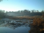 Morning fog over the Mantua Creek Marsh.
