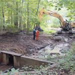 Highlight for Album: Synnott's Pond Restoration