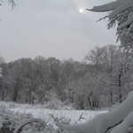 The Mantua Creek Marsh near West Willow Street, as the sun starts to peek through after a snowstorm.