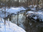 Monongahela Brook looks serene after a moderately heavy snowstorm.